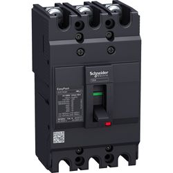 EZC100H3080